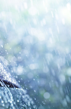 Regenschirm mit Regen